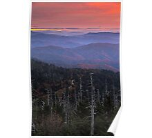 Autumn in the Appalachians - Clingman's Dome, NC/TN Poster