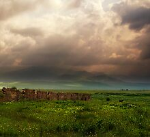 Panorama after the storm. by Ryan Carter