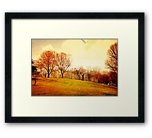 All That Space And No One To Play Framed Print