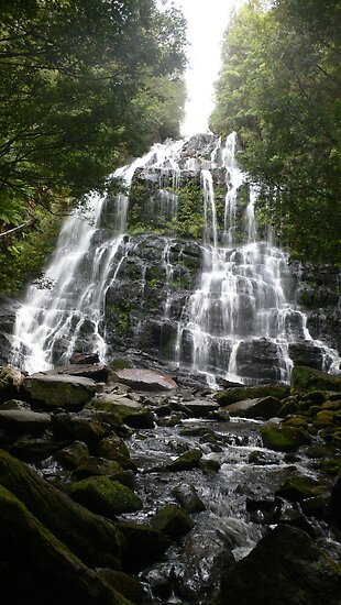 Nelsons Falls by brozekcordier