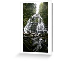 Nelsons Falls Greeting Card