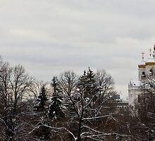 Church of the Saviour Panorama by Daniel Berends