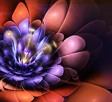Floral Flame by John Edwards