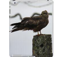 Black Kite iPad Case/Skin
