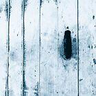 Blue weathered boatshed door by Maggie Hegarty