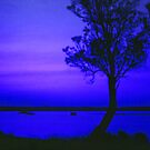 Sunset in Blue by Michael John