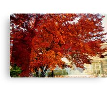 Surreal trees Canvas Print