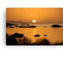 Pure gold - Kenmare, Ireland Canvas Print