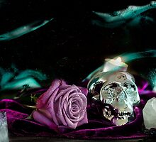 Purple Halloween Rose by ClaireMarie Photography
