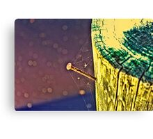 Rusty Nail With Spider Web Canvas Print
