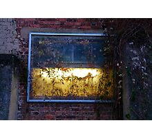 A Light Behind The Overgrown Walls Photographic Print