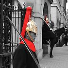 Household Cavalry  London by DavidFrench