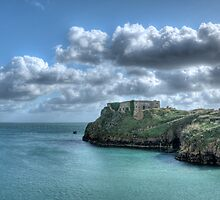 St Catherines Rock Tenby Pembrokeshire 3 by Steve Purnell