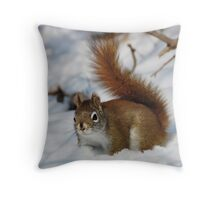 My Feet are Cold ! Throw Pillow