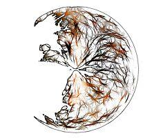 Broken Orb by Benedikt Amrhein