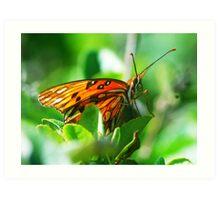 Butterfly face Art Print