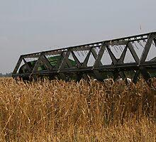 Harvesting by fotorobs