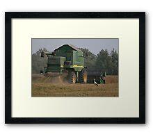 Stork in cornfield Framed Print
