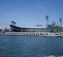Giants stadium by SANDRA BROWN