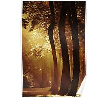 Feel the Heat of a Jersey July Morning Poster
