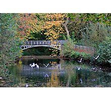 Vogelenzang Park - Antwerp - Belgium #2 Photographic Print