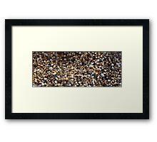 Salt & Pepper Framed Print