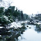 Aberdour Dour Burn in Winter by Steve Hammond