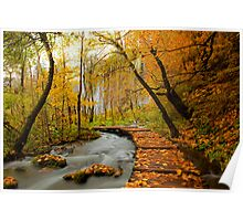 Waterfall behind the trees Poster