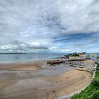 Tenby Harbour Pembrokeshire 19 by Steve Purnell