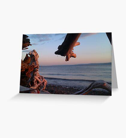 Alki Beach Greeting Card