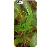 Blue Eyes I-Phone Case iPhone Case/Skin
