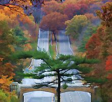 """October Road by Christine """"Xine"""" Segalas"""