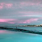 Bondi Sunrise by jphenfrey
