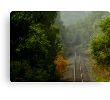 Morning View Canvas Print