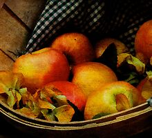 Autumn Harvest by Lois  Bryan