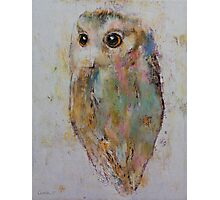 Owl Painting Photographic Print