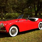 1953 Jaguar XK120 by SummerJade
