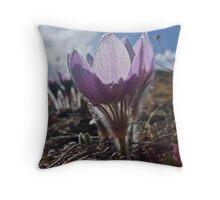 April - Pasque flower Throw Pillow
