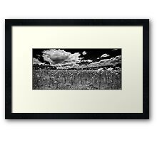 """Country Fields"" Framed Print"