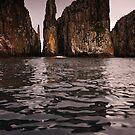 Tasman Peninsula by Michael Walters