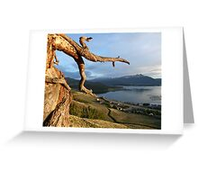 July - Summer breeze Greeting Card
