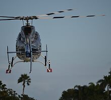 Bell UH-13H Landing by anorat