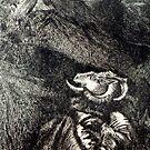 A HORNED ANIMAL by REKHA Iyern [Fe] Records Canada