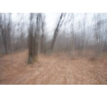 A road for the spirits to crossover Photographic Print