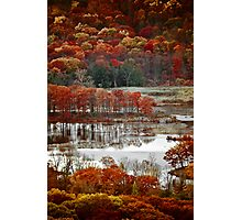 Fall Colors 4020 Photographic Print