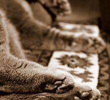 Crespo Feet by Camilla