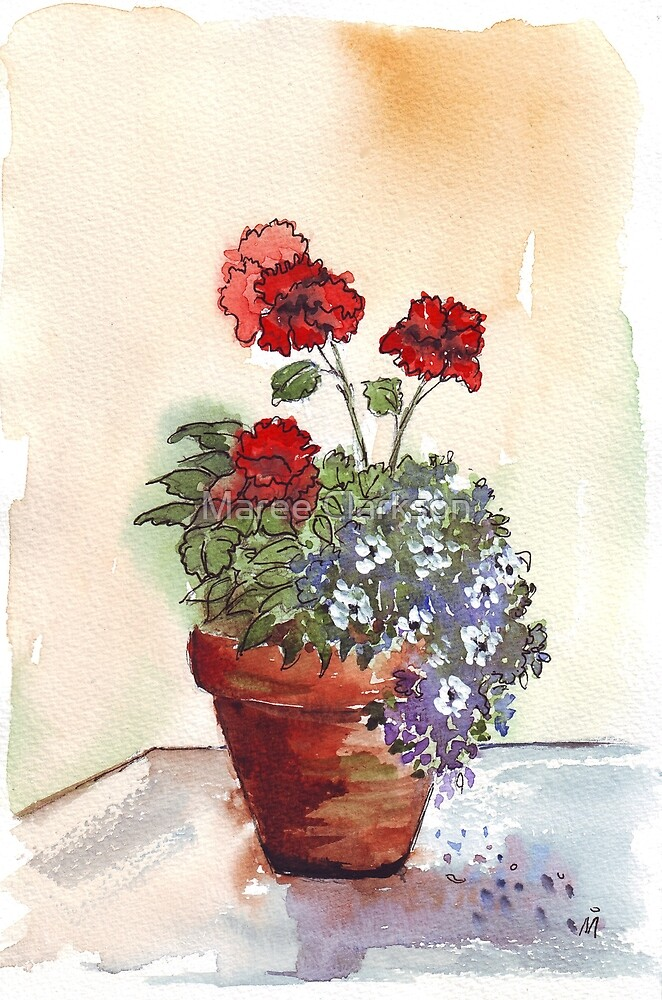 Looking forward to beautiful Geraniums by Maree Clarkson
