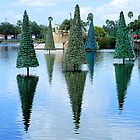 Christmas Trees Reflections by rosaliemcm