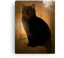 Vintage kitty Canvas Print