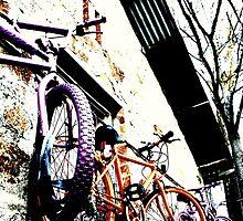 Hahndorf Bikes II by Camilla